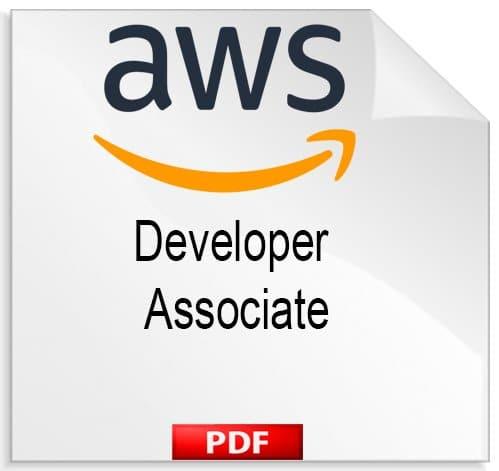 Developer - Associate